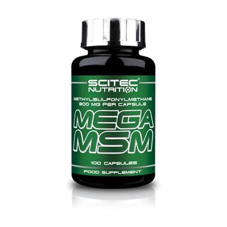MEGA MSM - 100kaps [Scitec]